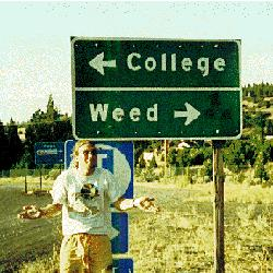 Marijuana Addiction Student on Campus