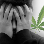 Casual Marijuana Use Changes the Brain
