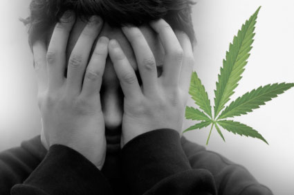 Casual Marijuana Use Changes the Brain
