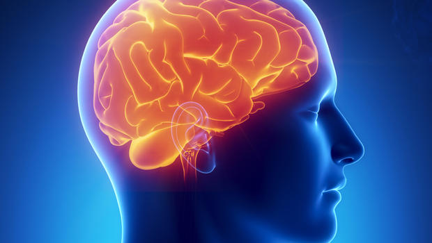 Occasional Drug Use in College-aged Youth Show Brain Differences