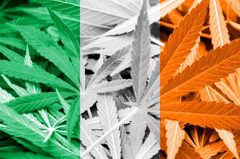 decriminalization dilemma